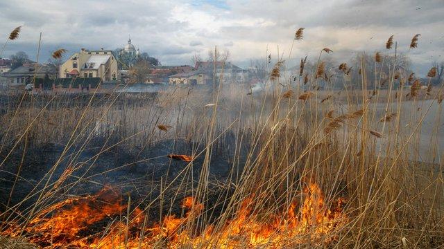 УГКЦ закликала людей не спалювати суху траву та опале листя