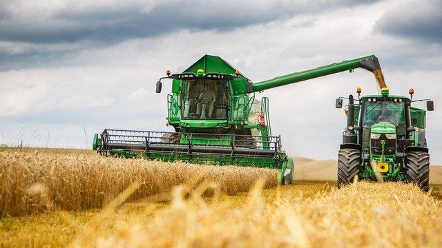 Цьогорічний врожай ранніх зернових в Україні став другим за обсягом за час незалежності