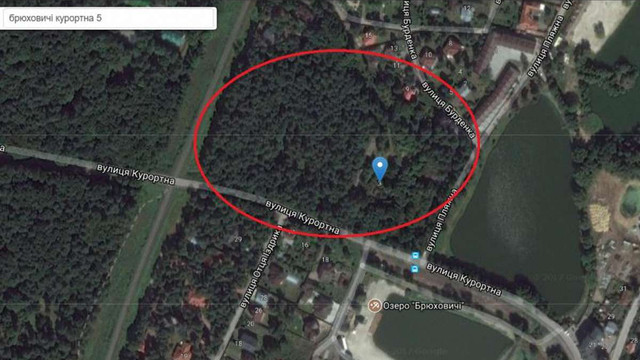 На орендованій ділянці у Брюховичах підприємиця без дозволу зрізала понад 80 дерев