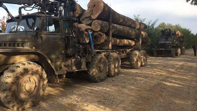 На Буковині СБУ затримала лісовози з деревиною без документів