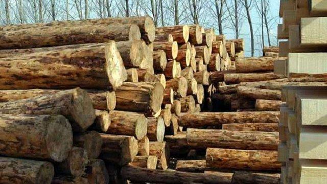 Посадовці лісгоспу на Львівщині преміювали себе на понад ₴5 млн