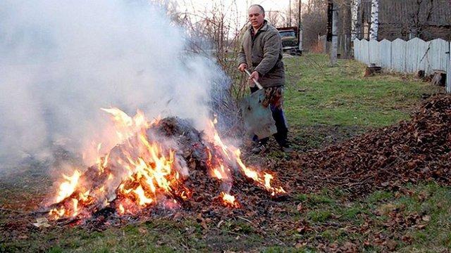Чому не можна спалювати опале листя, суху рослинність та гілля?
