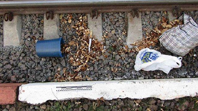 На Хмельниччині літня жінка потрапила під поїзд