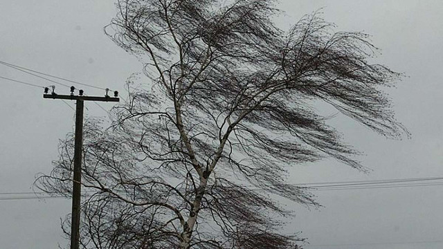 Негода на Львівщині знеструмила 139 населених пунктів