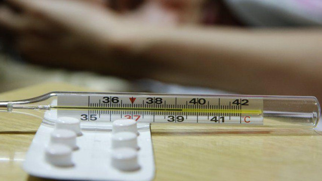 Лікарі-епідеміологи не виявили на Львівщині вірусів грипу