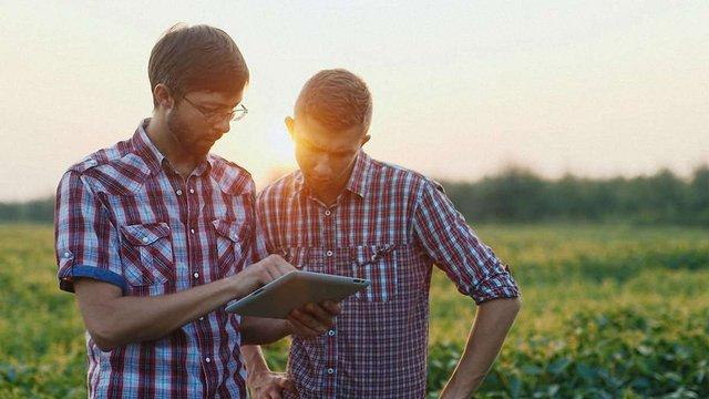 Проект збільшення врожаїв від студентів УКУ переміг на конкурсі у Канаді