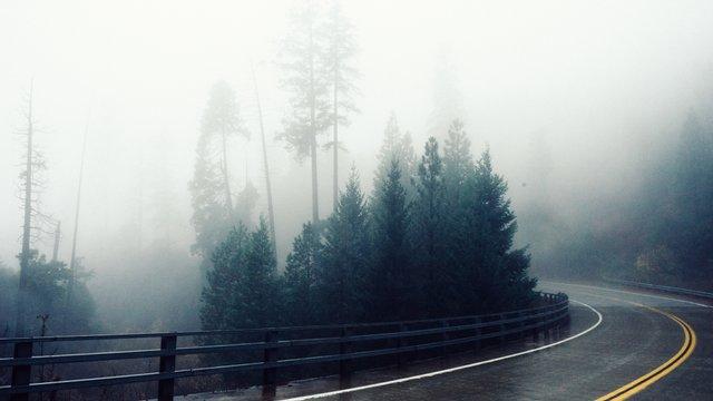Синоптики попереджають про туман та ожеледицю на дорогах Львівщини