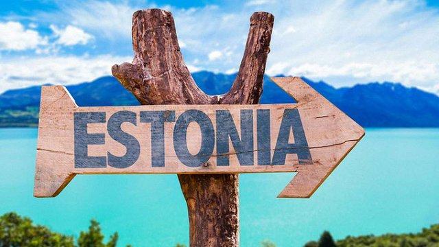 Українці в Естонії зареєстрували компаній більше, ніж громадяни інших держав