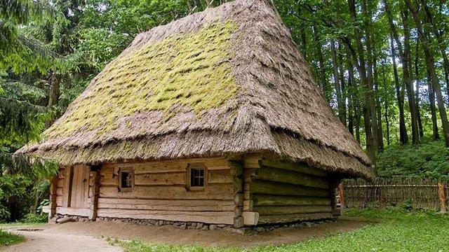 У «Шевченківському гаю» дерево впало на дах хати XIX ст.
