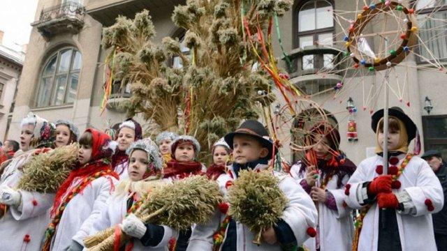 Напередодні Різдва в центрі Львова встановлять триметрового дідуха