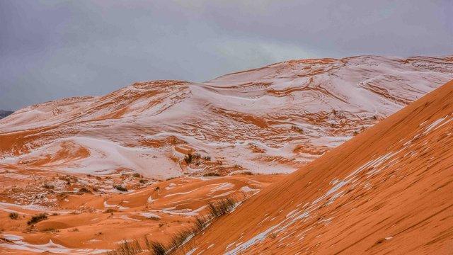 У пустелі Сахара вперше за 40 років випав сніг