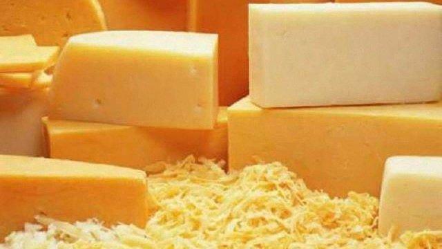 Імпортерів викрили на збуті в Україну фальсифікованих польських сирів