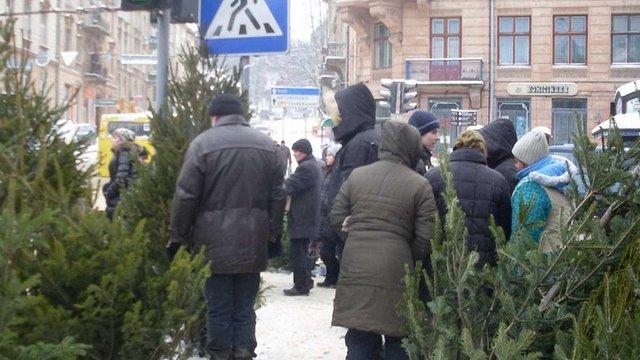 За незаконний продаж ялинок на Львівщині оштрафували 10 осіб