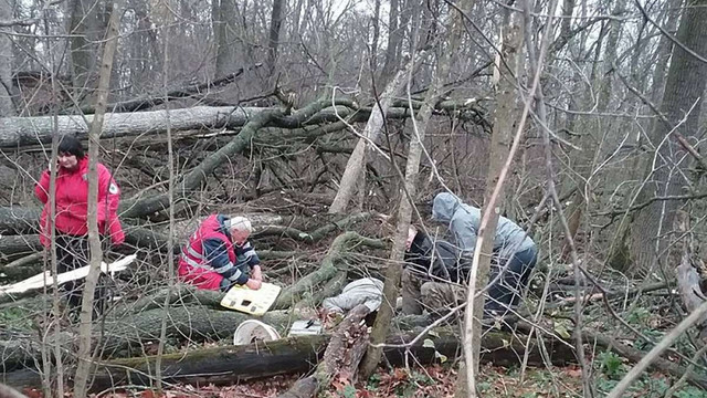 Мешканець Старосамбірщини потрапив до реанімації, травмувавшись під час заготівлі дров