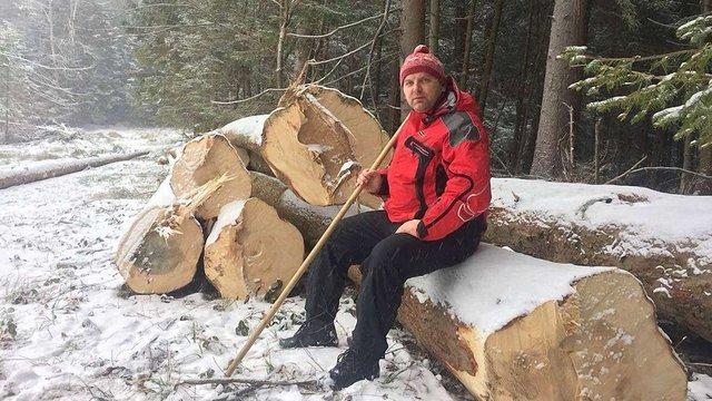 Активісти заявили про незаконну вирубку лісу на Старосамбірщині