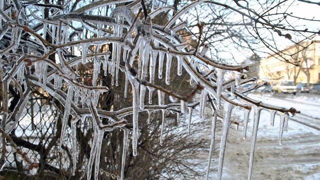 Морози в Україні відступають: на більшості території буде плюсова температура