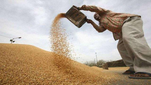 Індонезія стала найбільшим покупцем української пшениці у світі