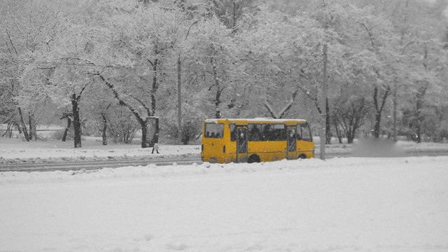 На Львівщині синоптики оголосили штормове попередження через туман та ожеледицю
