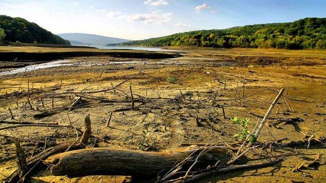 Через кліматичні зміни Україні загрожує посуха та втрата Полісся