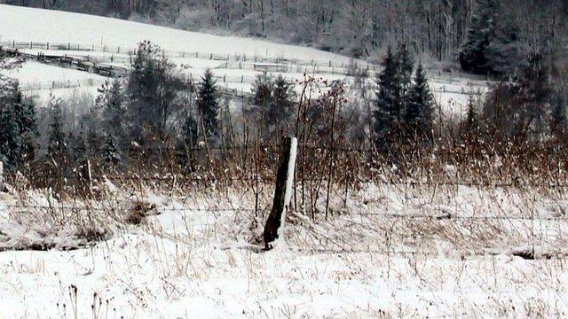 У Чернівецькій області в снігу знайшли тіло колишнього депутата