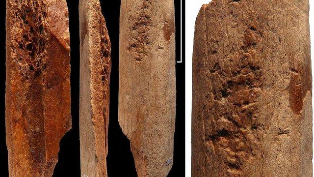 У Китаї знайшли інструменти з кістки віком 115 тис. років