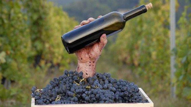 Верховна Рада легалізувала в Україні дрібне виноробство