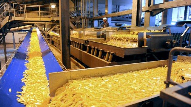 В Україні збудують два заводи з виробництва картоплі фрі