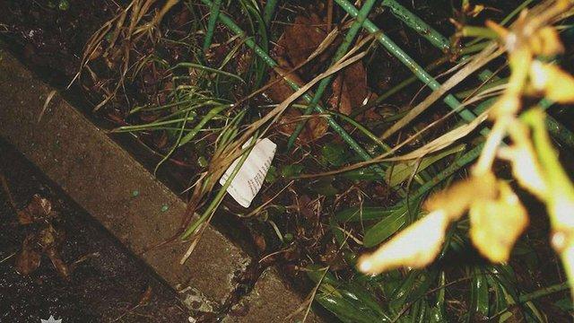Львівська поліція зупинила водія без прав у стані наркотичного сп'яніння