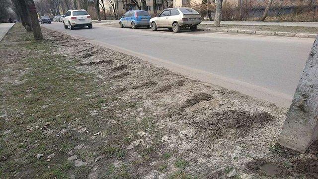 У Львові зареєстрували петицію з вимогою відмовитись від посипання вулиць піском
