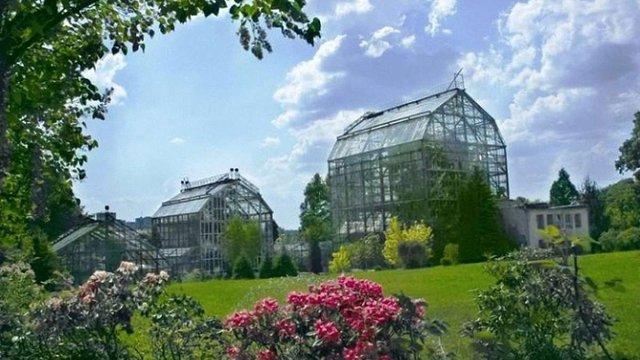 Львівський ботанічний сад проведе день відкритих дверей