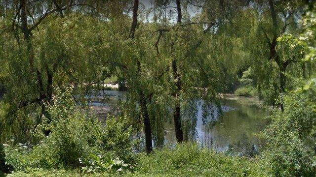 Усі водойми Львова мають перевищений вміст шкідливих речовин