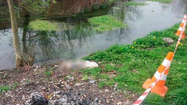 На Буковині місцеві жителі у річці знайшли мертве немовля