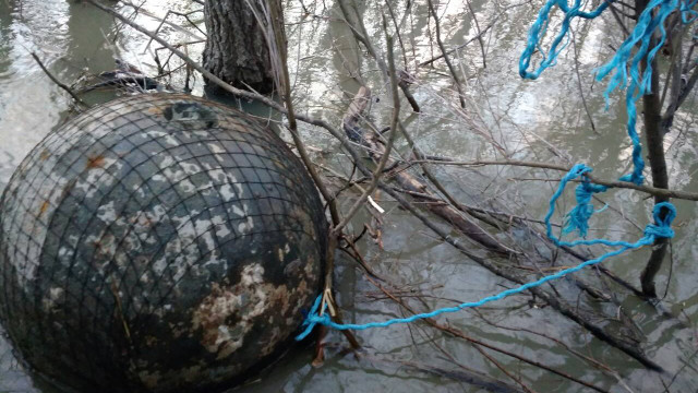 Українські прикордонники виявили в Дунаї п'ять донних мін