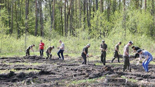 Капелани Гарнізонного храму з військовими висадили понад 6 тис. дерев у Рава-Руському лісгоспі