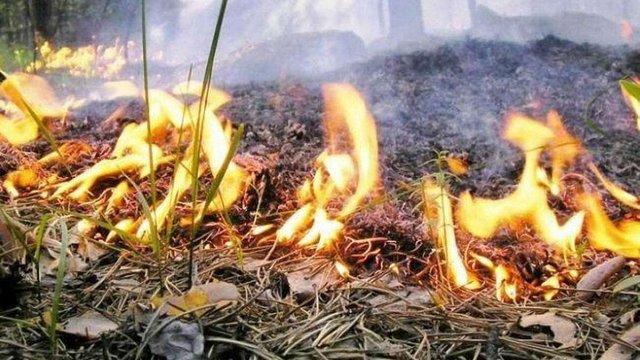 У найближчі три дні на Львівщині буде  надзвичайна пожежна небезпека
