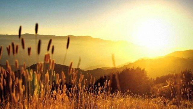 В липні-серпні Україну очікує 35-40-градусна спека