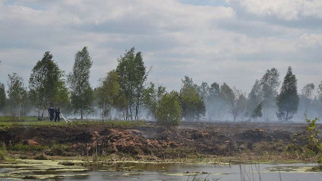 Рятувальники три дні гасили пожежу на торфовищі біля Львова