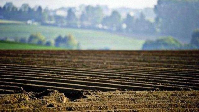 ЄСПЛ зобов'язав Україну надати власникам сільгоспземель право вільно ними розпоряджатися