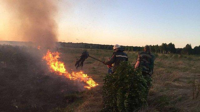 Через спалювання сухої рослинності у Бродівському районі вигоріло 3 га заказника