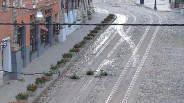 У центрі Львова нетверезі туристи пошкодили квіткові клумби