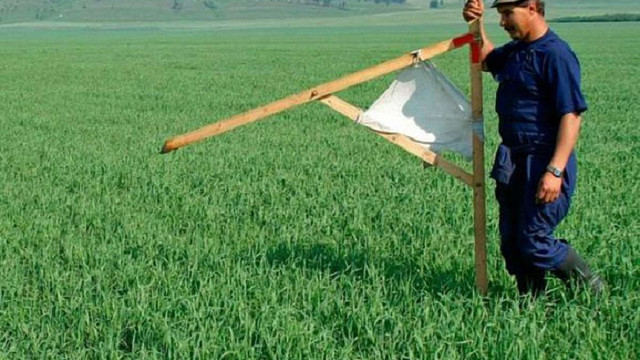 Уряд має намір оскаржити рішення ЄСПЛ щодо мораторію на продаж землі