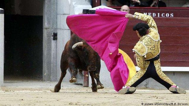 В Іспанії пройшли масові протести проти кориди
