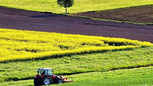 На Львівщині після аудиту посівні площі збільшилися на 22 тис. га