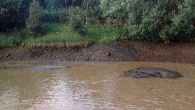 У Бориславі та Східниці тимчасово призупинили водопостачання