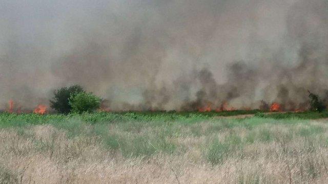 На Херсонщині загасили масштабну степову пожежу
