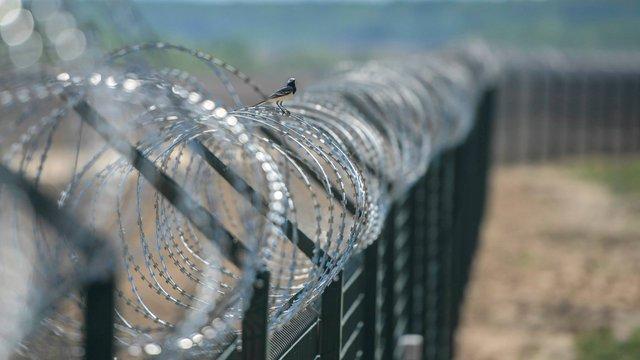 Польща відклала будівництво стіни на кордоні з Україною та Білоруссю