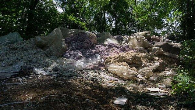 Мішки з мільйонами подрібнених гривень знайшли поблизу Дніпра