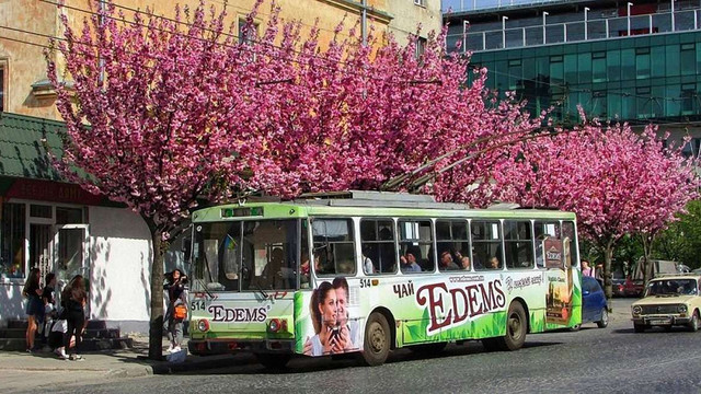 Ще два тролейбусні маршрути у Львові припинять роботу до жовтня