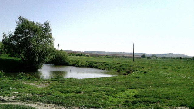 Через забруднення хімікатами у річці на Золочівщині знизився рівень кисню