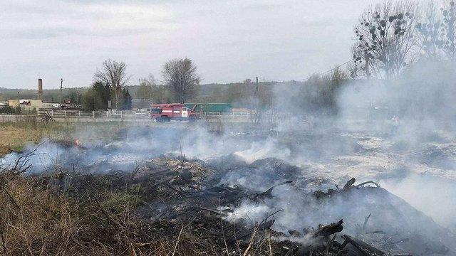 Екологи оцінили шкоду від лісової пожежі на Львівщині майже у ₴4 млн